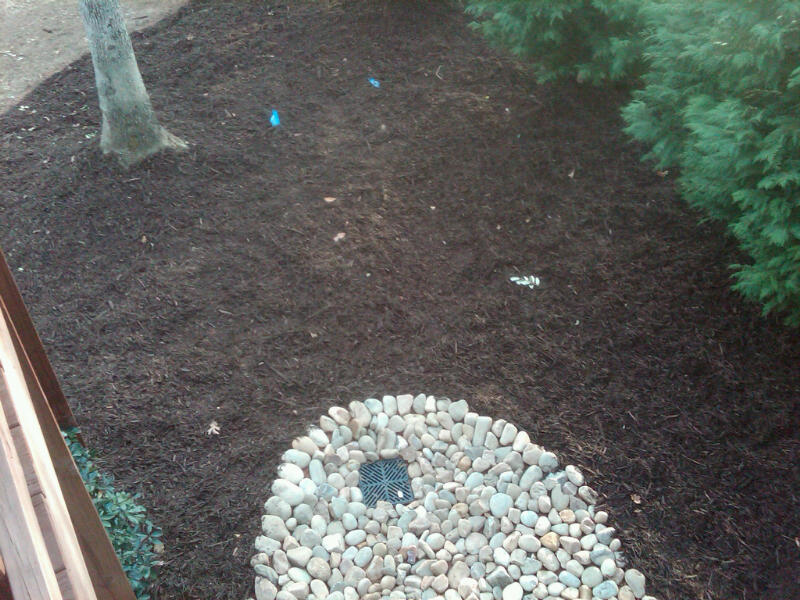 Gibbs lawn design drainage solutions for Yard drainage basin