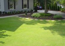Landscape Maintenance, Reel mowing, Walkpath Installation