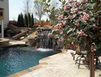 landscape upgrades pool landscaping